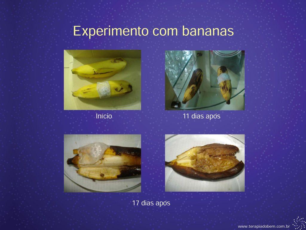 Eletroacupuntura - Terapia do Bem 0027