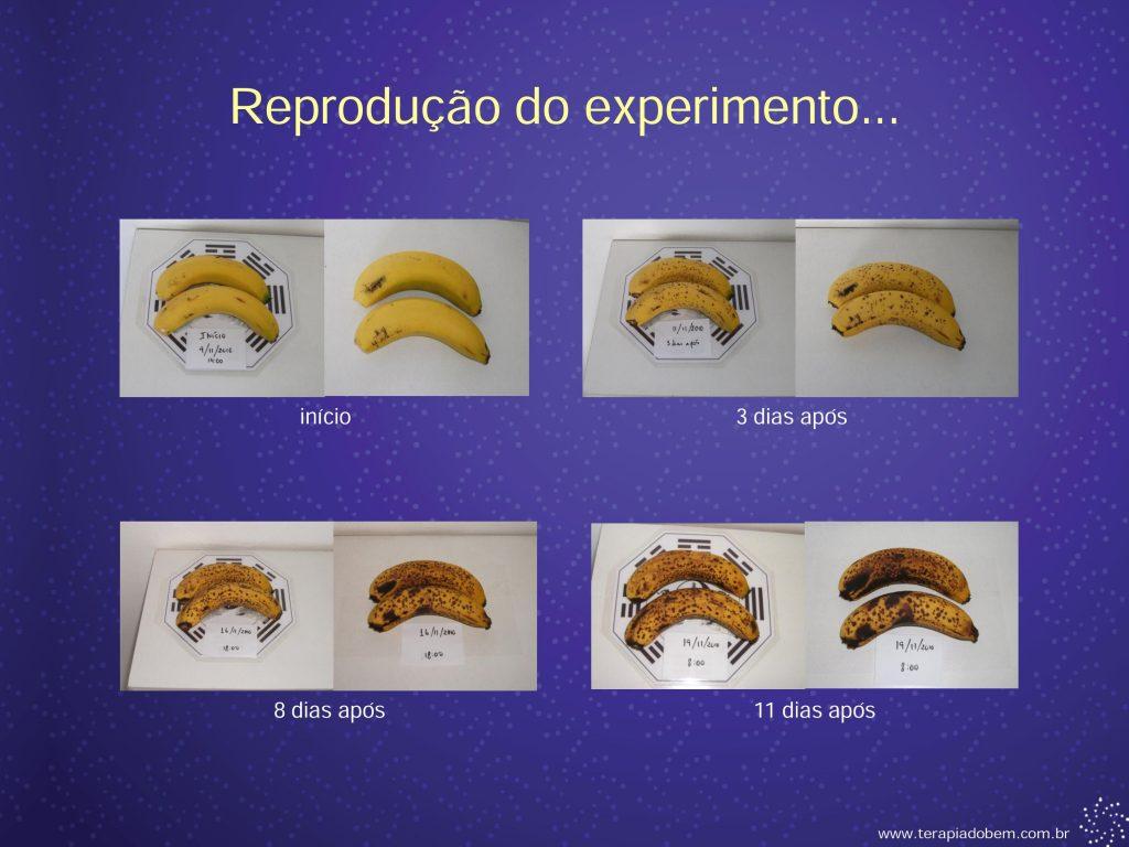 Eletroacupuntura - Terapia do Bem 0028